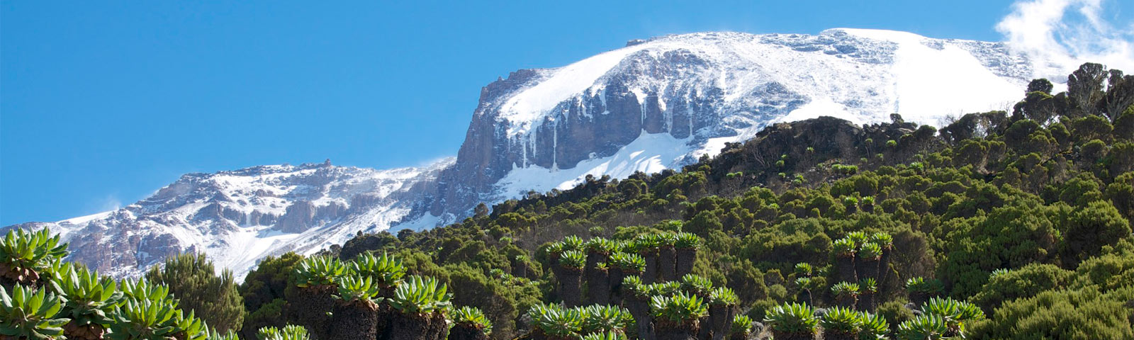 The Adventure Boutique - 'Mount Kilimanjaro Ascent'